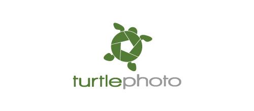 logos_creativos_tortugas_14