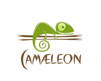 logos_creativos_camaleones_6