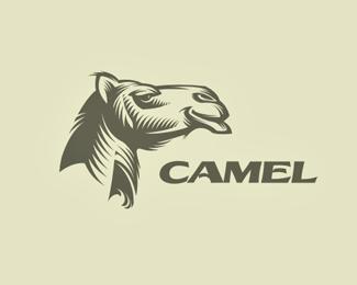 logos_creativos_camellos_1