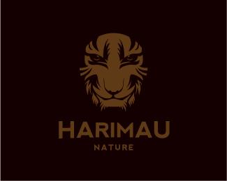 logos_creativos_tigres_1