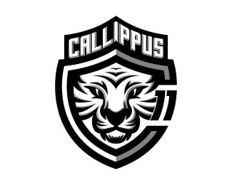 logos_creativos_tigres_21