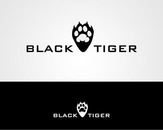 logos_creativos_tigres_29