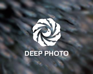 delfin_logo_deep_photo