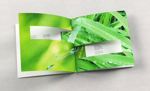 folletos_catalogos_creativos_3
