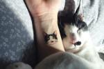 tatuajes_ilegales_gatos_corea_del_sur