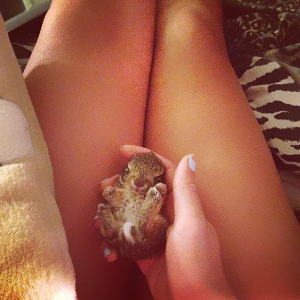conejos_tiernos_12