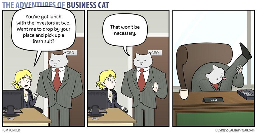 gato_empresario_11