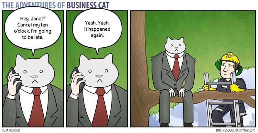 gato_empresario_12