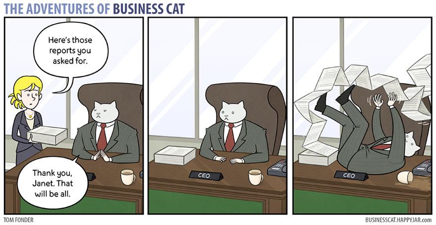 gato_empresario_5
