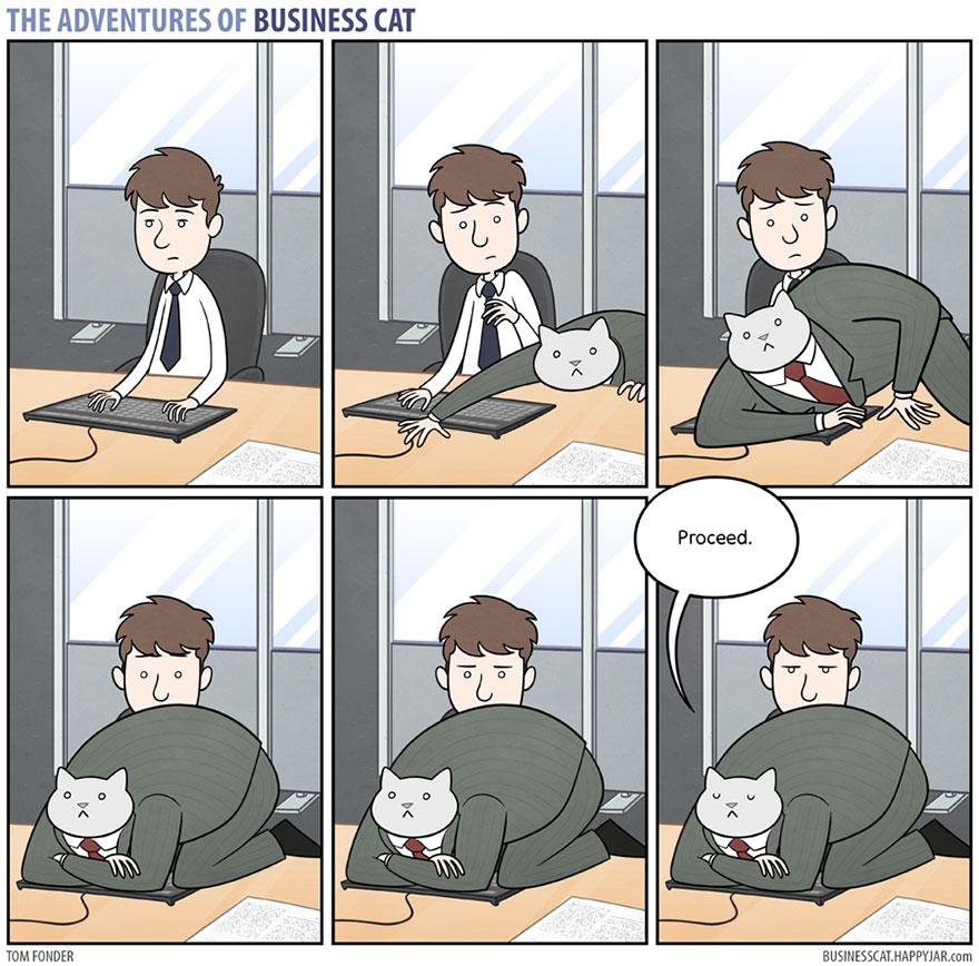gato_empresario_7