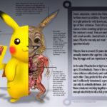 Ilustraciones detalladas revelan la anatomía pokemon