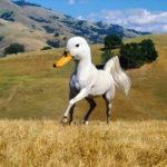 Este artista no puede dejar de crear híbridos animales en Photoshop