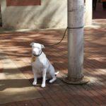 Estatuas de perros tamaño real para fomentar la adopción de animales abandonados
