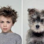 Fotógrafo retrata a los perros y sus dueños con el mismo look