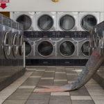 Criaturas fantásticas emergen del interior de lavarropas