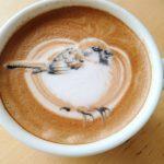 Artista autodidacta del café crea coloridas ilustraciones de aves