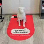 Esculturas de perros vuelven a Barcelona en Navidad para promover la adopción
